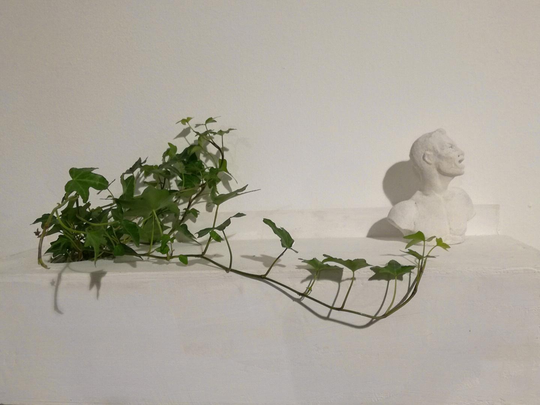 Guillermina De Gennaro, Inglobe, plaster sculpture, ivy, wood, 45x20x15cm. 2017.