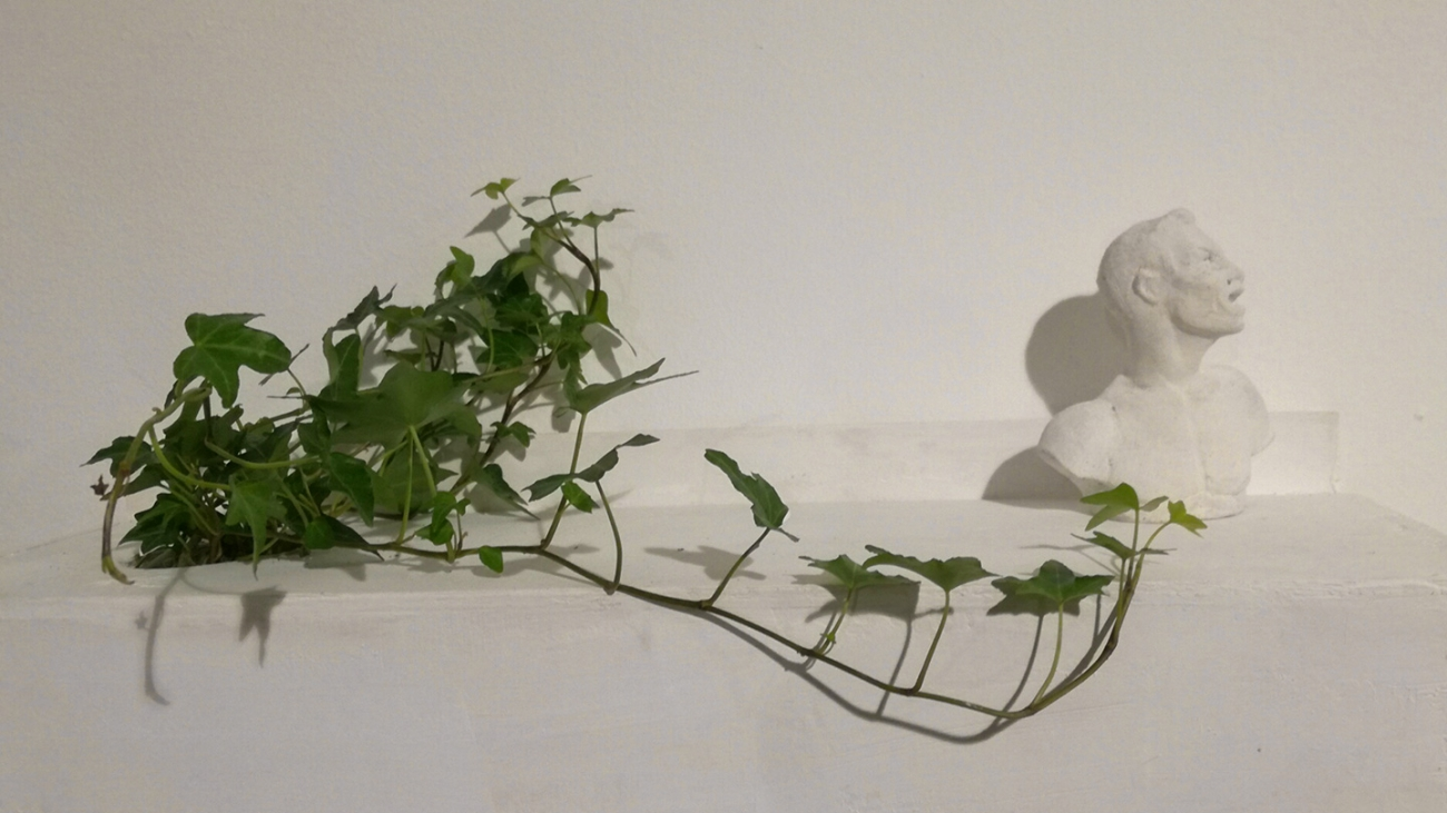 Inglobe, plaster sculpture, ivy, wood, 45x20cm. 2017.