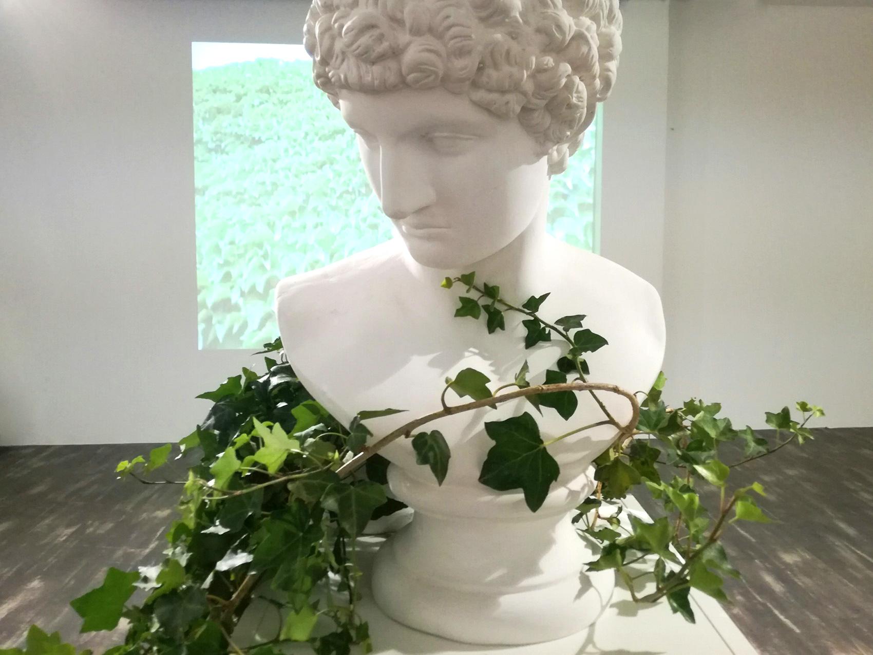 Guillermina De Gennaro, Inglobe, plaster sculpture, ivy, 2017.